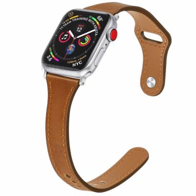 Usnjeni pašček (brown) za Apple Watch Serien 6/SE/5/4 40mm / Series 3/2/1 Watch 38mm