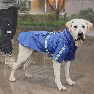 Pasji dežni plašč